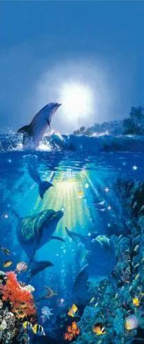 Fototapety, rozmer 86 x 200 cm, delfíni, W+G 513