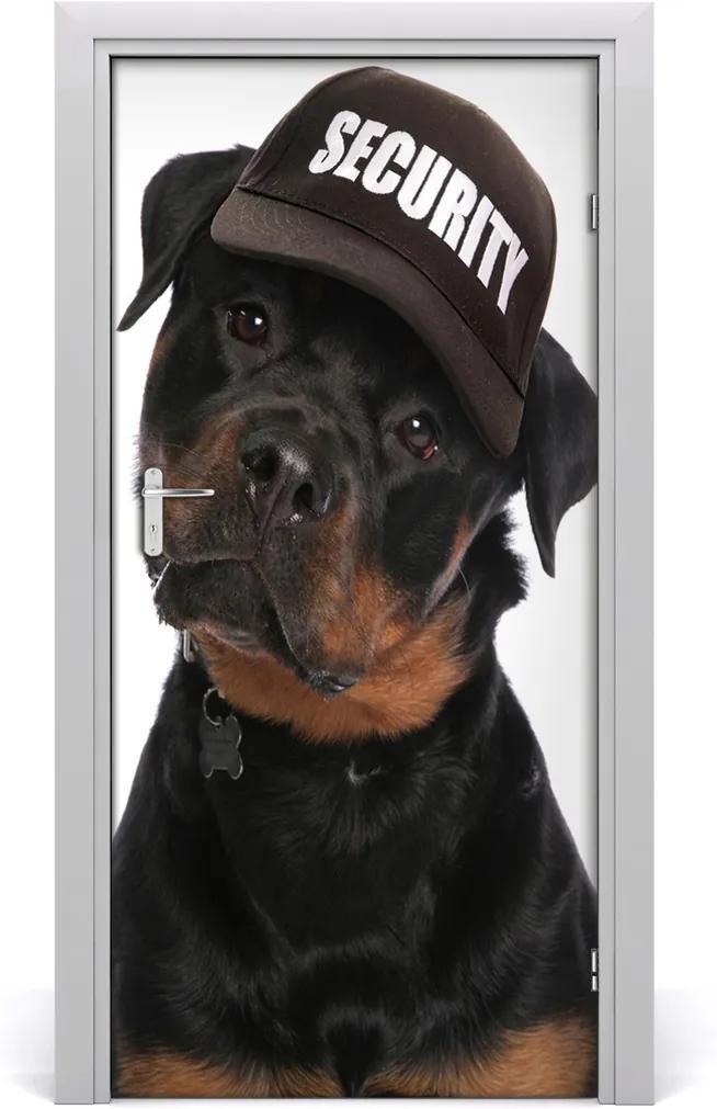 Samolepící fototapeta na dveře Rottweiler