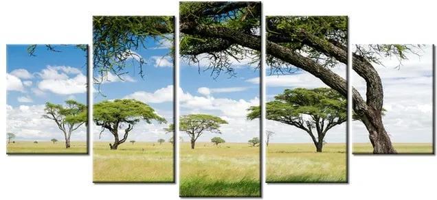 Tlačený obraz Nádherná slnečná Afrika 150x70cm 2234A_5B