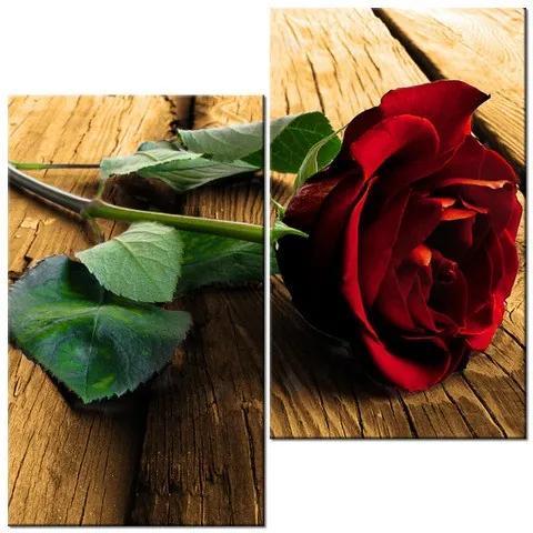 Tlačený obraz Ruža pre milovanú 60x60cm 2057A_2J