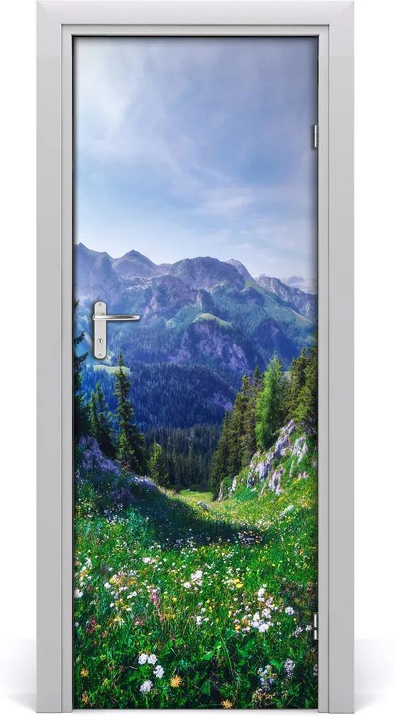 Fototapeta na dveře samolepící Alpy