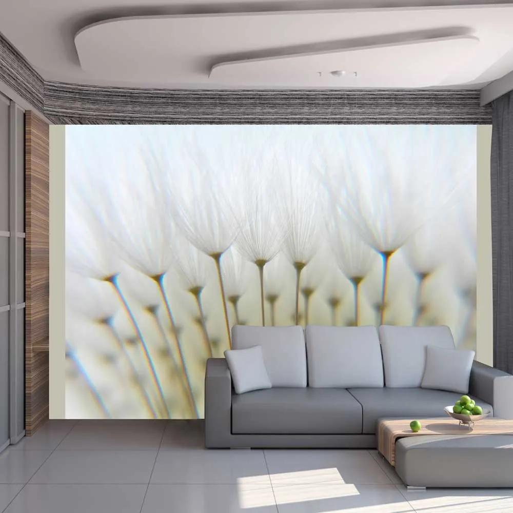 Fototapeta - Dandelion forest 200x154