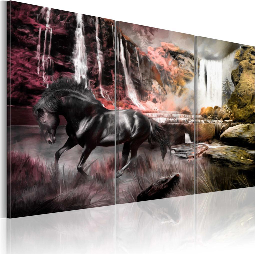 Obraz - Black horse by a waterfall 60x40