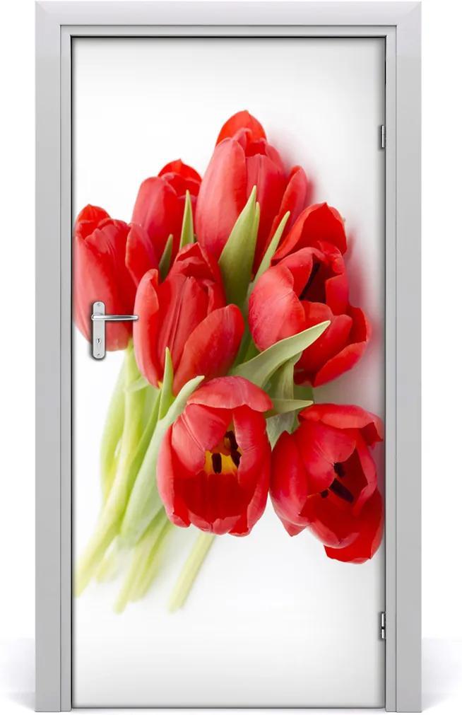 Fototapeta samolepící Červené tulipány