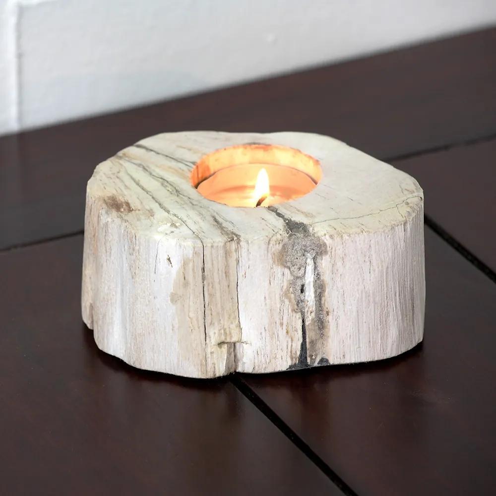 Svietnik skamenené drevo svetlý béžová