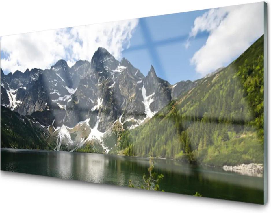 Akrylové obraz Hora jezero les krajina