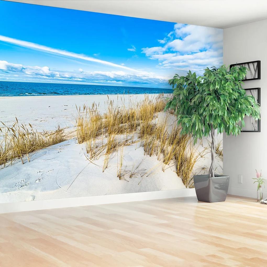 Fototapeta Mořské duny