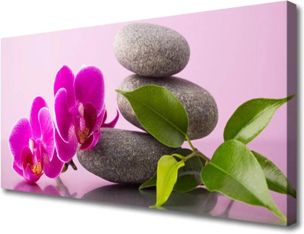 Obraz Canvas Kvet Kamene Zen Rastlina