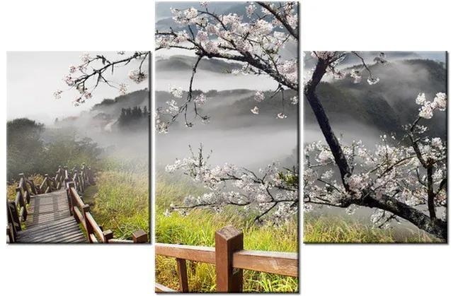 Tlačený obraz Kvitnúca višňa 90x60cm 1207A_3B