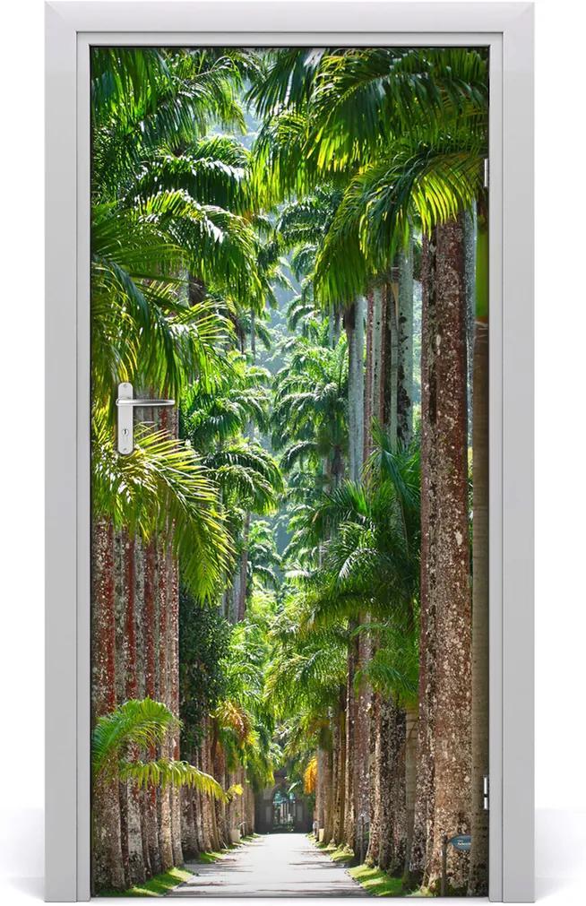 Fototapeta na dveře Palmy
