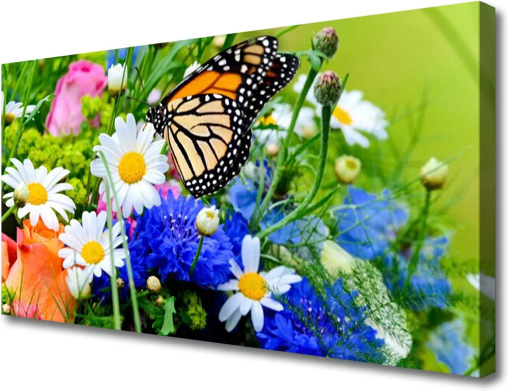 Obraz na plátně Květiny rostlina příroda