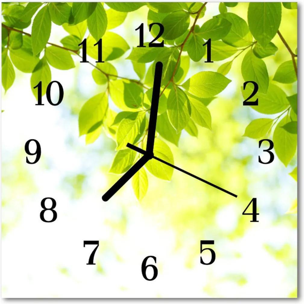 Skleněné hodiny čtvercové listy
