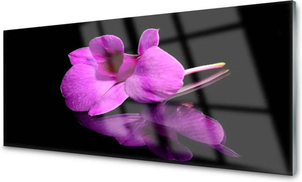 Plexisklo obraz Květiny mtvá příroda