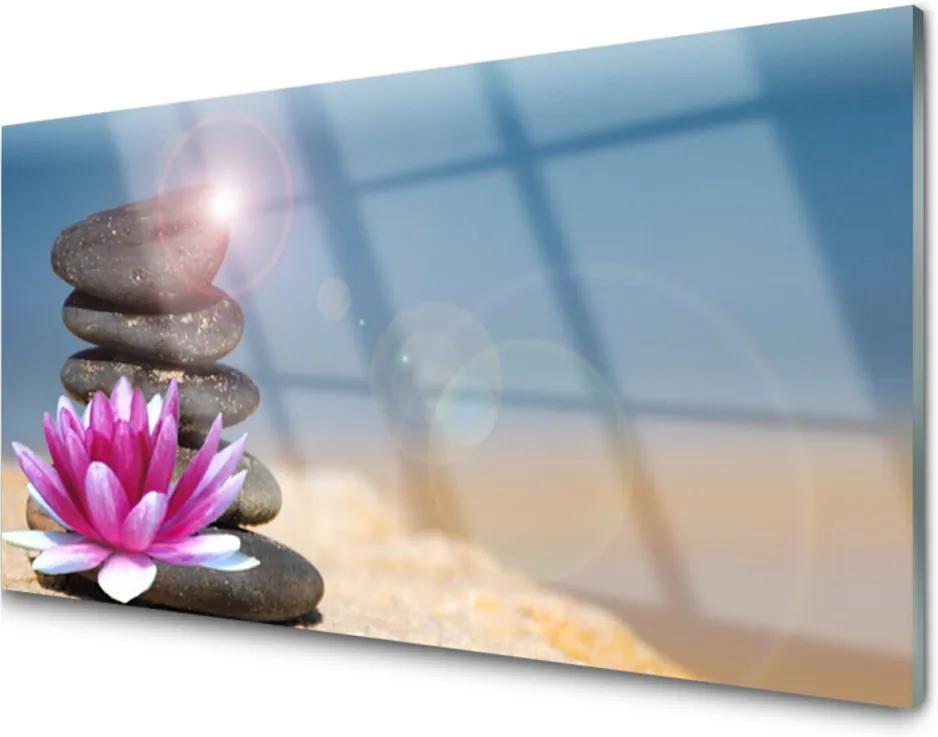 Plexisklo obraz Kameny květ umění