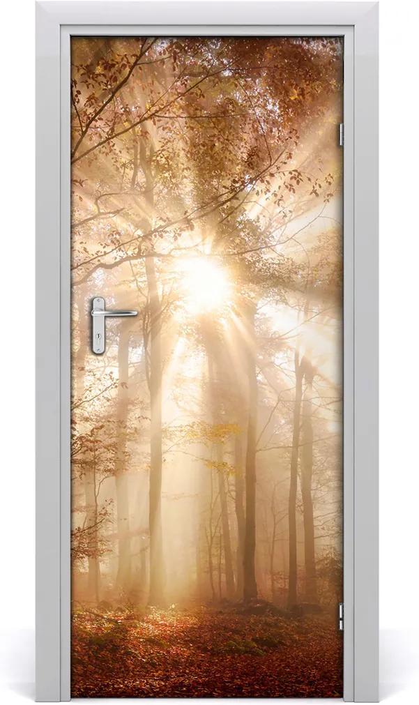 Fototapeta na dvere samolepiace  les jeseň