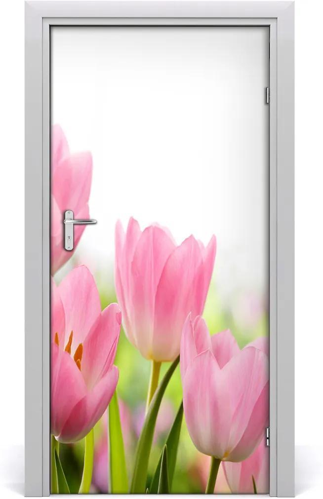 Fototapeta samolepící Růžové tulipány