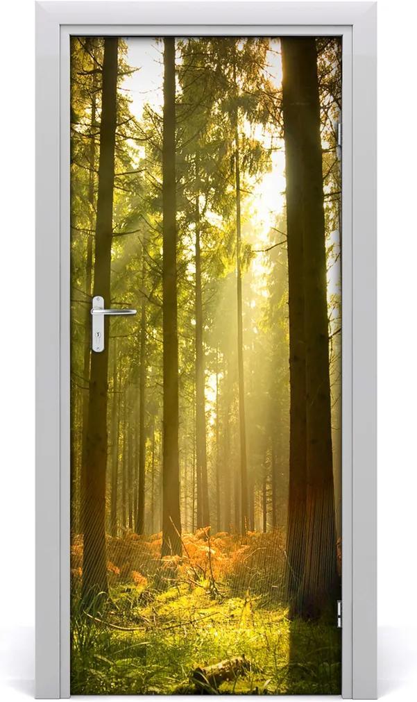 Fototapeta na dveře Hezký les
