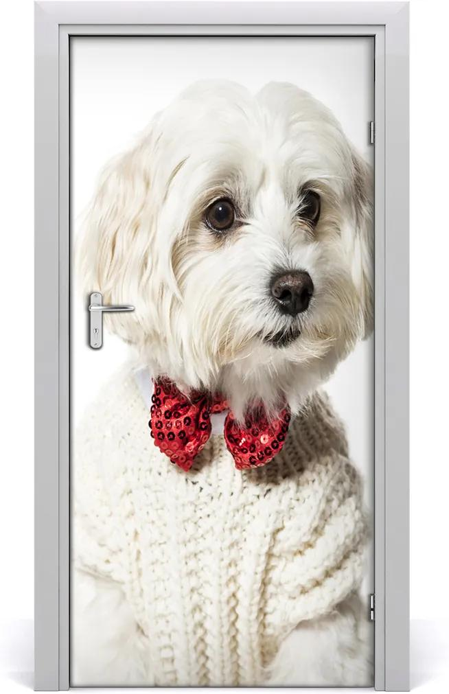 Samolepící fototapeta na dveře Pes s muškou