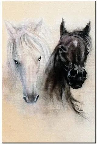 Tlačený obraz Black and White Horses 2502A_1S