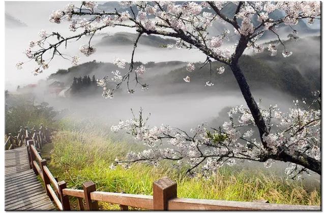 Tlačený obraz Kvitnúca višňa 1207A_1T