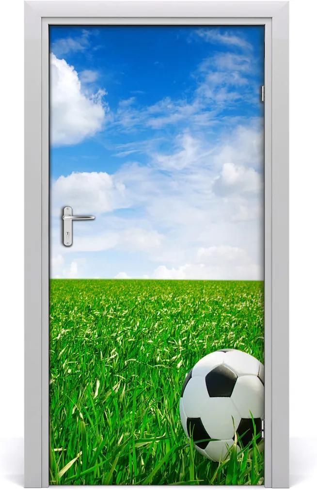 Fototapeta samolepící dveře Fotbal na louce