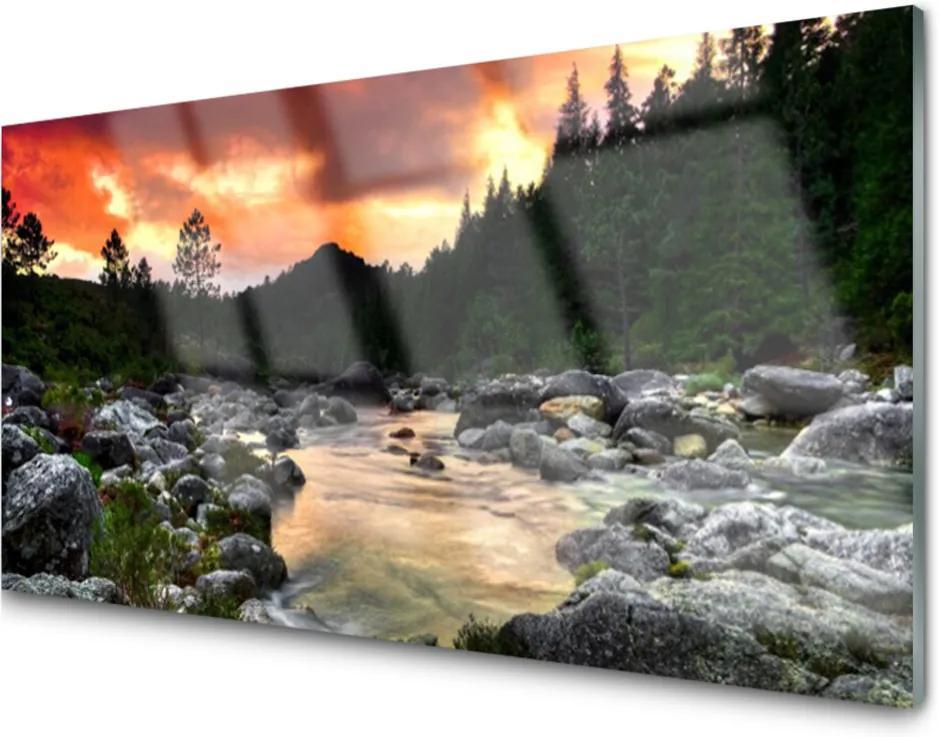 Sklenený obklad Do kuchyne Jazero Kamene Les Príroda