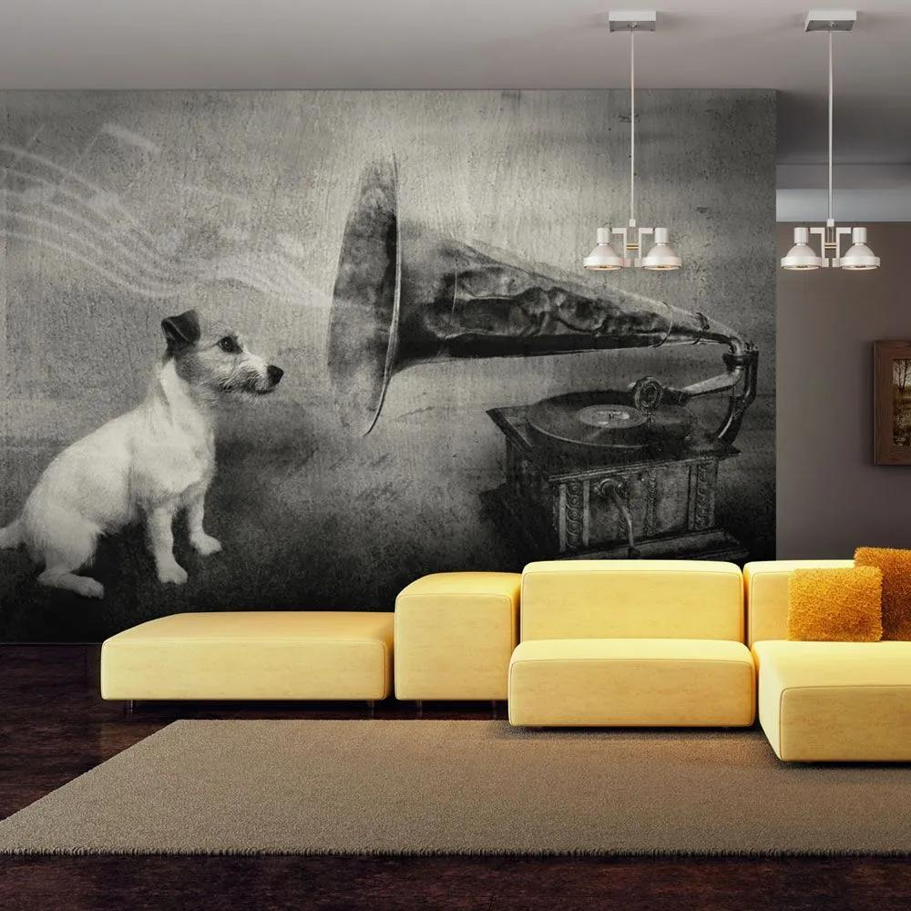 Fototapeta - Dog's melodies 200x154