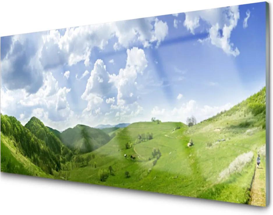 Plexisklo obraz Hora louka příroda