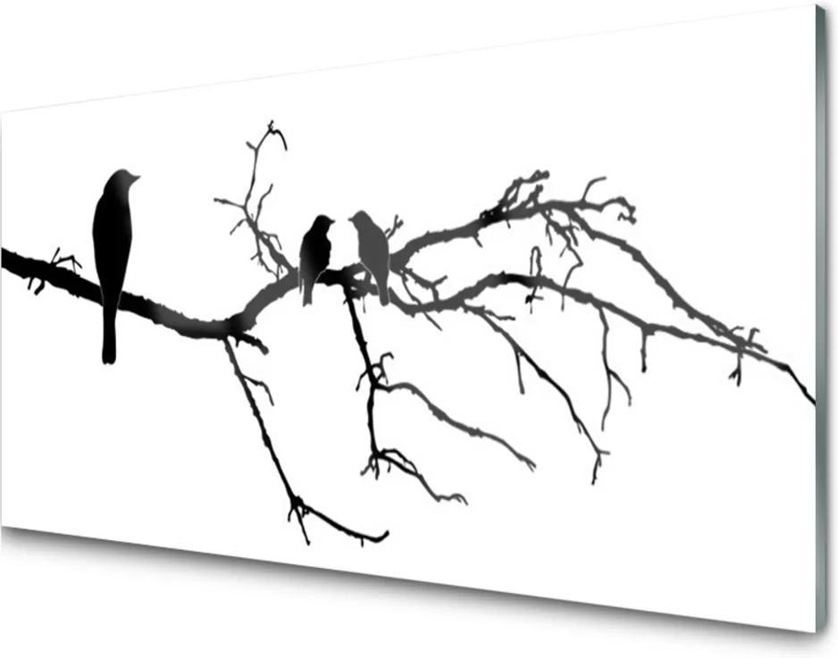 Obraz na skle Ptáci větev umění