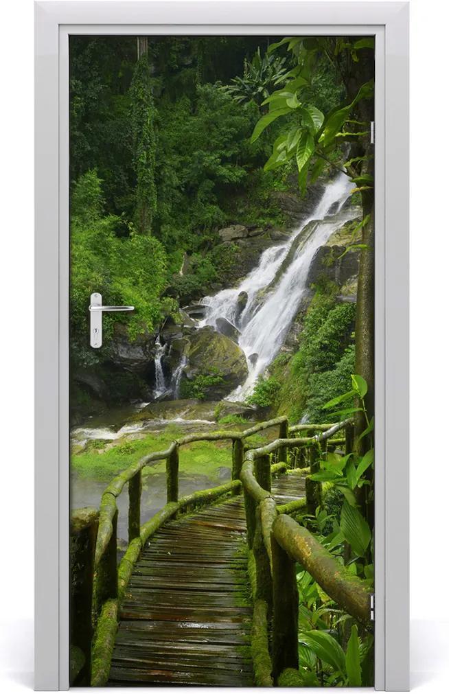 Fototapeta na dveře samolepící Stezka džungle