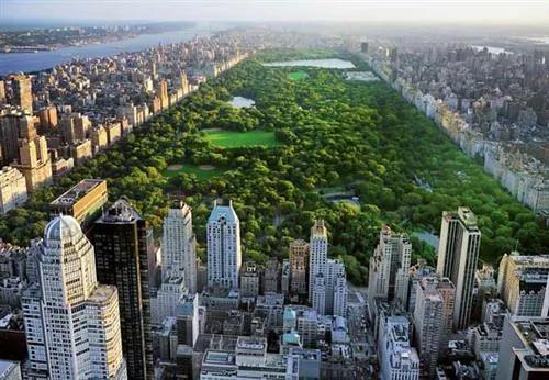 Fototapety, rozmer 366 x 254 cm, Central Park, W+G 163