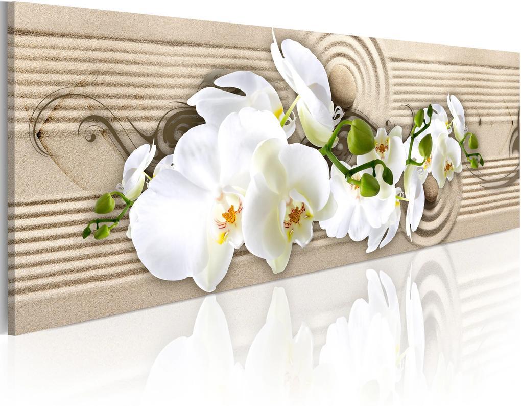 Obraz - Desert Flower 150x50