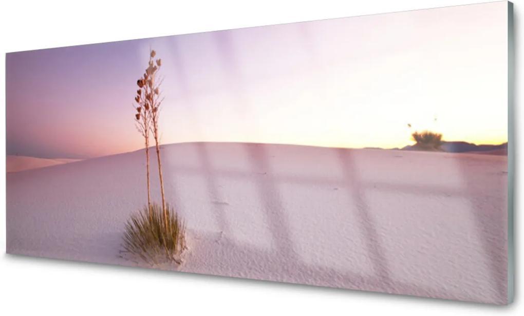 Skleněný obraz Púšť Písek Krajina