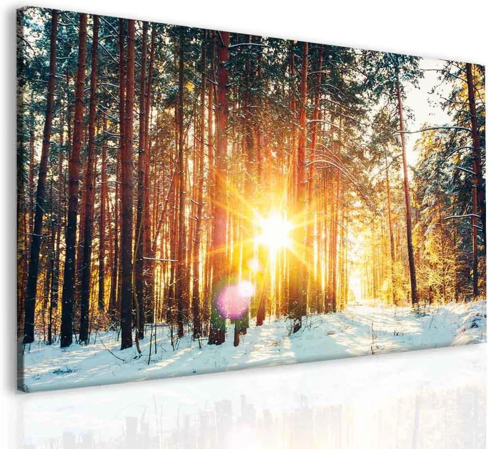 InSmile Les - První sníh 90x60 cm