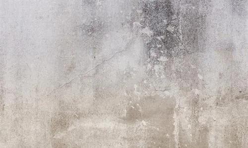 Luxusné vliesové fototapety, rozmer 450 cm x 270 cm, omietková stena, P+S International NT6332022