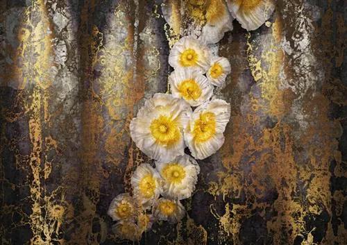 Fototapety, rozmer 368 x 254 cm, Searfina, KOMAR 8-963