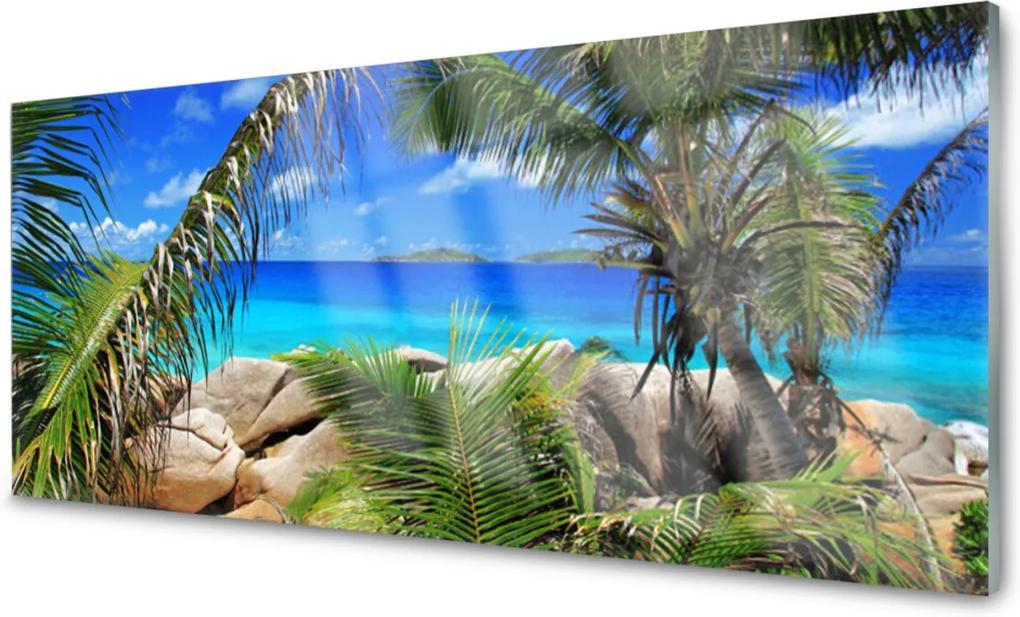 Obraz na skle Skala Listy Krajina