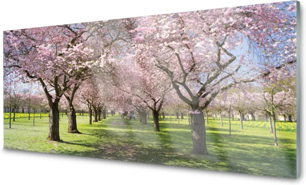 Akrylové obraz Stezka stromy příroda