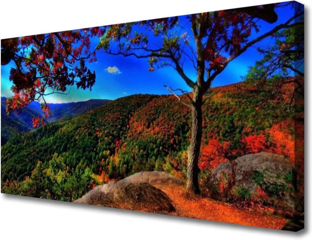 Obraz na plátně Sklenený Hora Les Príroda