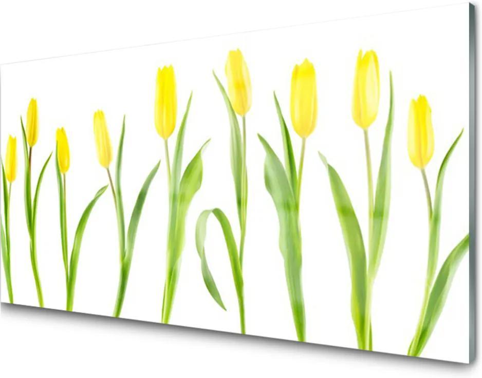 Sklenený obklad Do kuchyne Žlté Tulipány Kvety