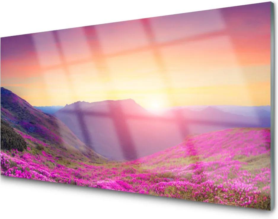 Skleněný obraz Slnko Hory Lúka Príroda