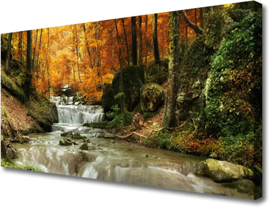 Obraz Canvas Vodopád les příroda