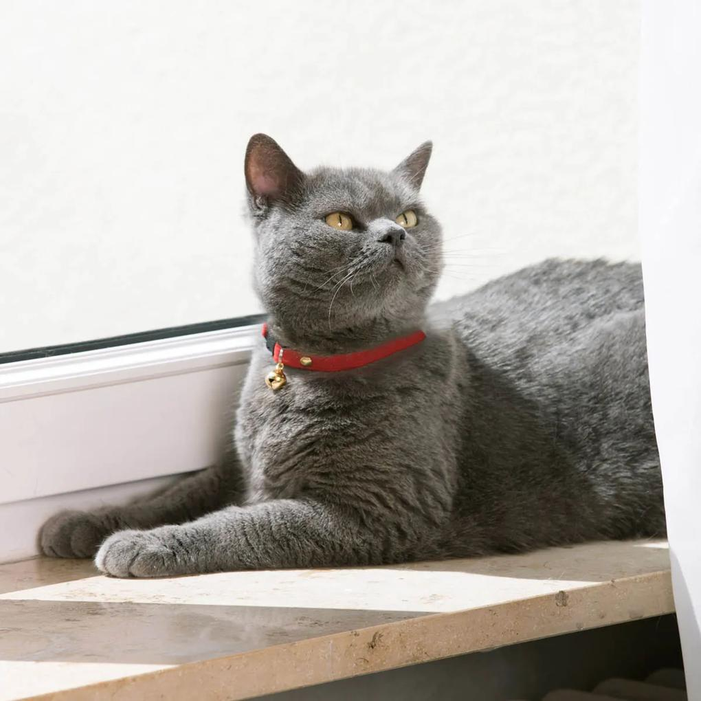 Pružný obojok pre mačku