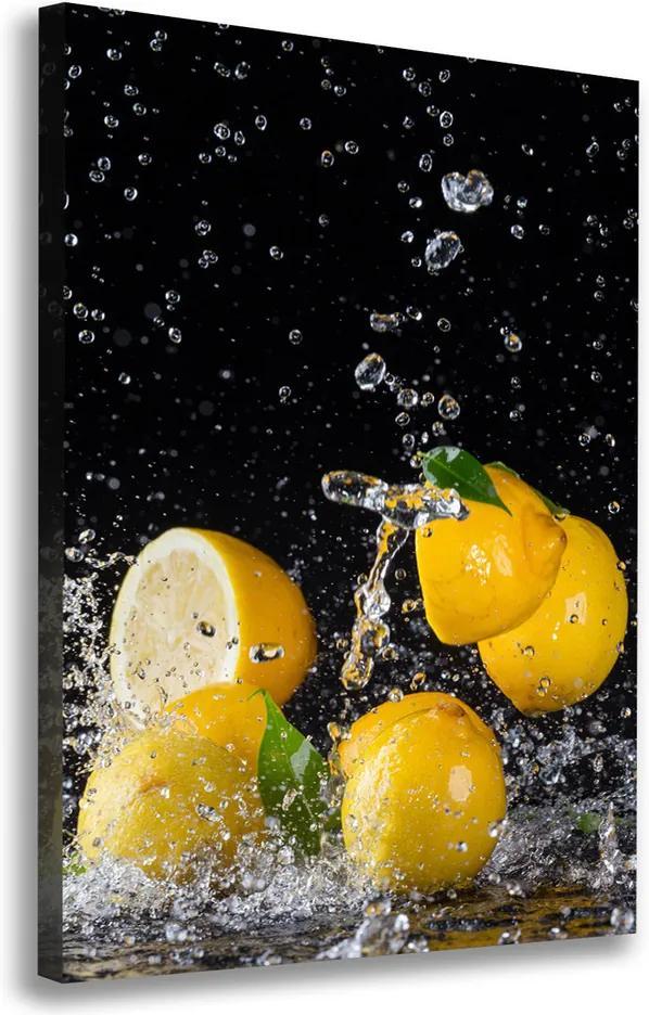 Moderný obraz canvas na ráme Ovocie a ľad pl-oc-70x100-f-64818305