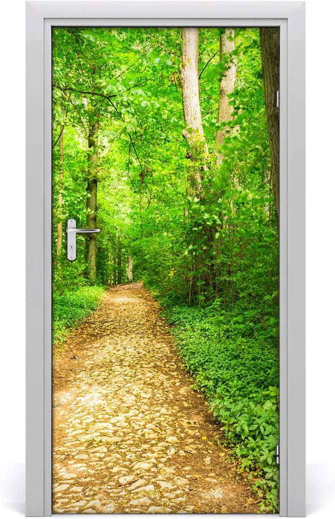 Fototapeta na dveře samolepící Stezka v lese