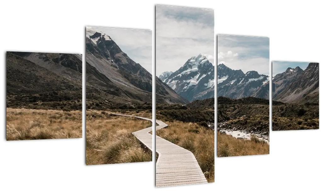 Obraz - Chodník v údolí hory Mt. Cook (125x70 cm), 40 ďalších rozmerov