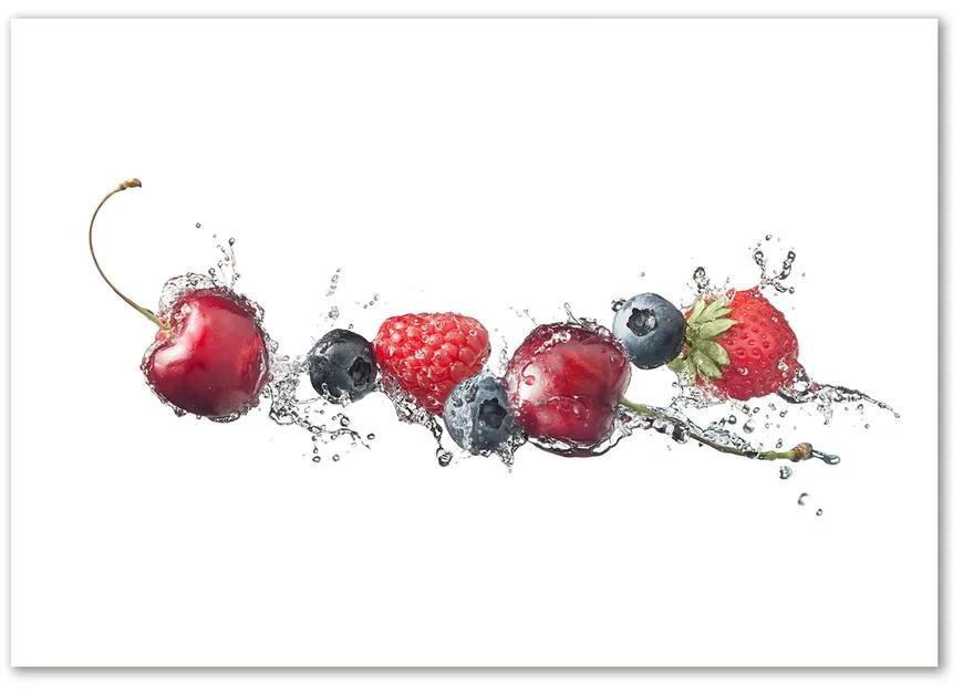 Foto obraz sklo tvrdené Lesné ovocie pl-osh-100x70-f-89101710