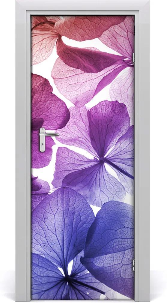 Fototapeta na dveře Fialové květy