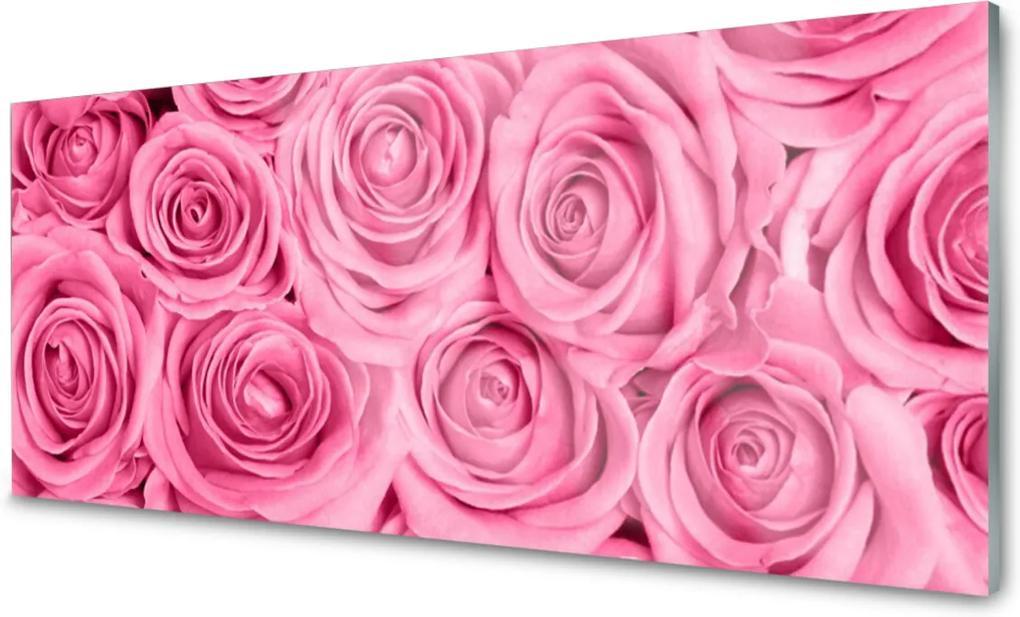 Obraz na skle Ruže Kvety Rastlina