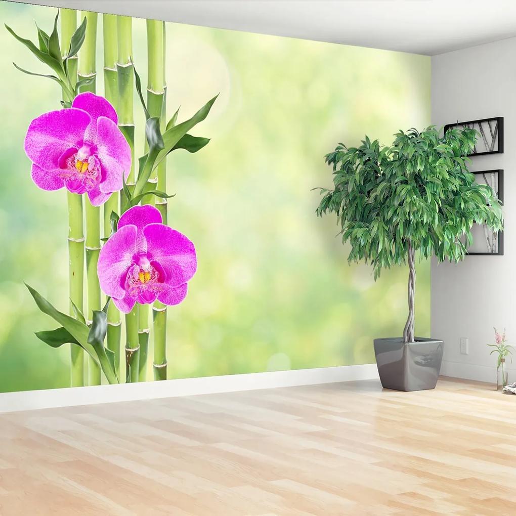 Fototapeta Orchidej a bambus